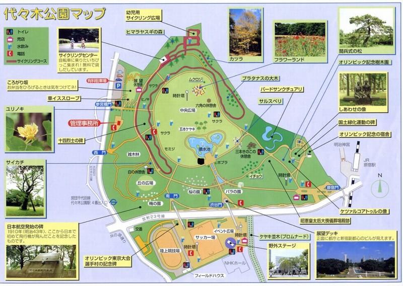 代々木 公園 イベント